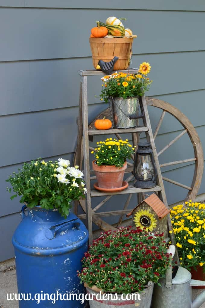 Gardening Recap - Fall Vignette - Ladder in the Garden