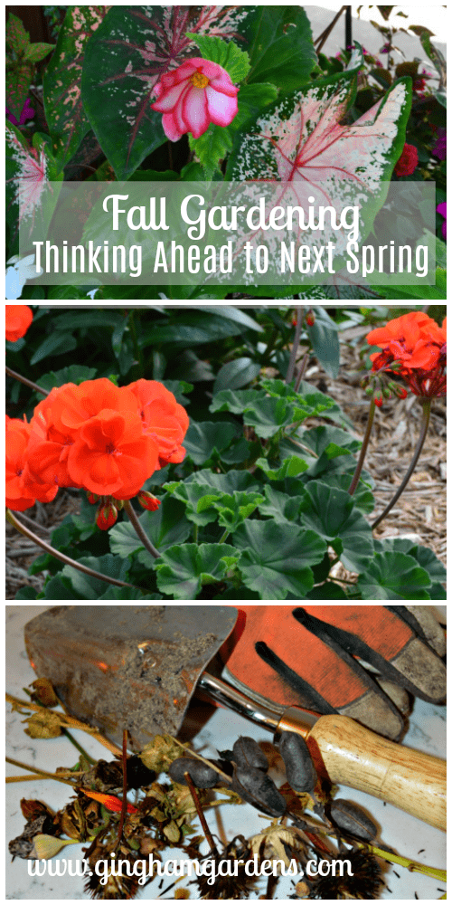 Fall Gardening Thinking Ahead to Next Spring