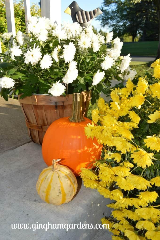 Fall Porch Decor at Gingham Gardens