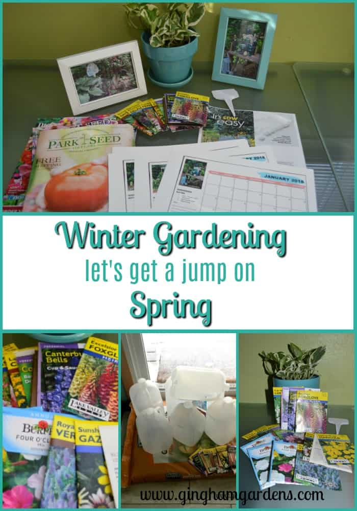 Winter Gardening - Let's Get A Jump on Spring
