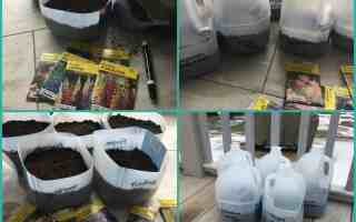 Winter Sowing – Yes You Can Garden in Winter