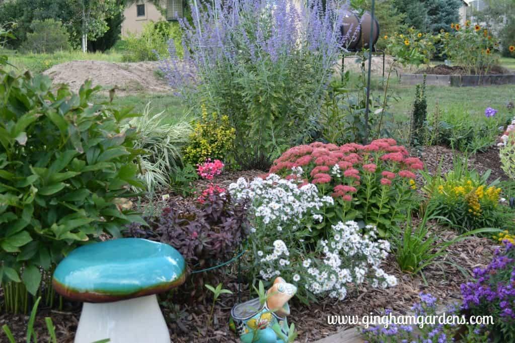 Flower Gardening Ideas: 3 Sisters in 3 Gardening Zones - Gingham Gardens