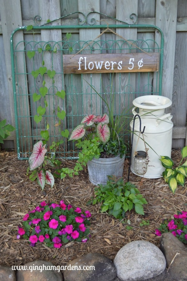 Garden Vignette Featuring A Garden Gate, Vintage Milk Can U0026 Galvanized  Bucket