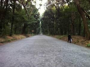 Auf dem Weg zum Meiji-jingu. Alles leer..
