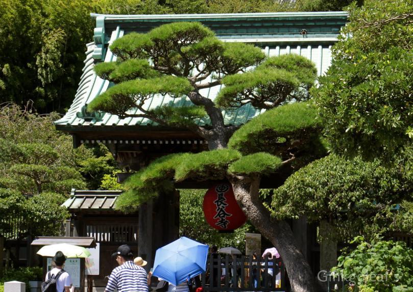 Hasedera in Kamakura