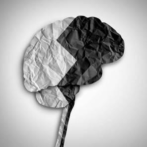 A 3D illustration of the bipolar brain