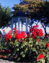 livermore_wineries