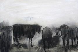Aus dem Leben der Kühe / zuhause b