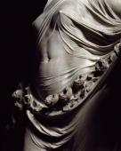 "Antonio Corradini, ""The Veiled Truth, Modesty, Chastity"" (1751), detail"
