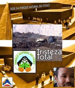 Fogo, cartelli d'aiuto pubblicati sul web, novembre-dicembre 2014 - 16/20