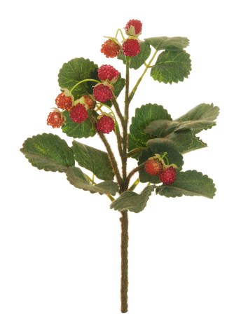 RASPBERRY SPRAY (LAMPONE)