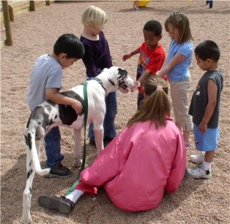 Sensibilização das crianças para a convivência e cuidados com os animais