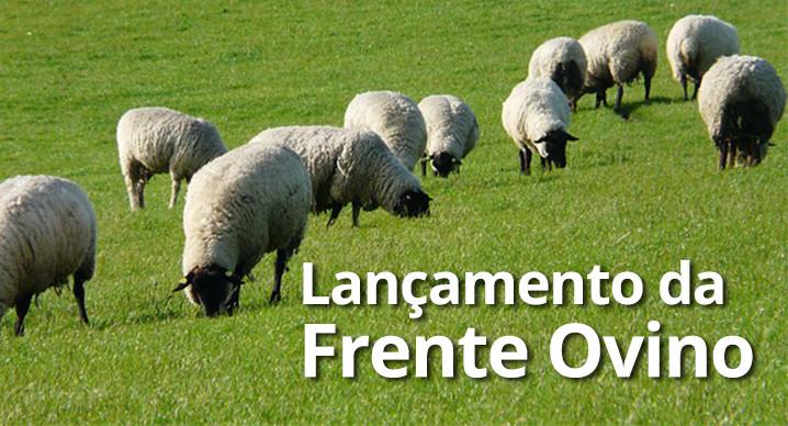 Instalação da Frente Ovino será na próxima semana