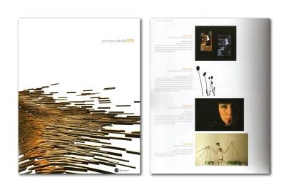 Catalogo Premio Celeste 2010