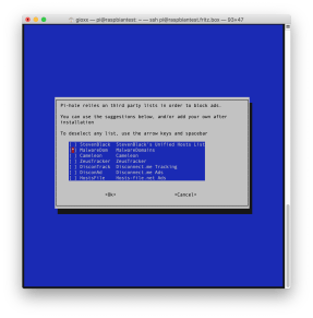 Pi-hole: installazione e prima configurazione (Aggiornato) 4
