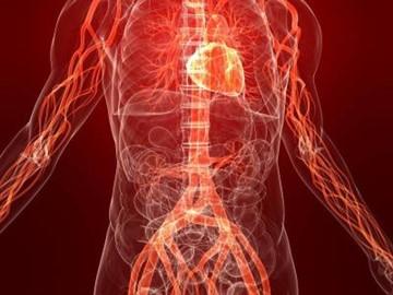 Что лежит в основе изменения кровяного давления. Для определения артериального кровяного давления используют