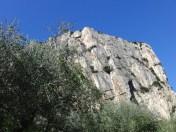 Olivenbäume und Colodri © Gipfelfieber.com