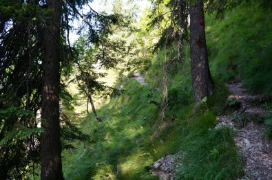 Der Steig windet sich steil durch den Hang © Gipfelfieber.com