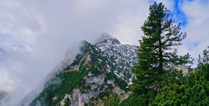 Reiteralpe - Kleinod im Berchtesgadener Land ©Gipfelfieber