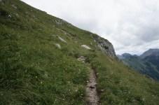 Der Steig windet sich durch Wiesen © Gipfelfieber.com