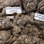 Rechts geht`s weiter zur Kreuzspitze, links zum Kuchelberg © Gipfelfieber.com