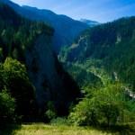 Erster Blick in die Viamala Schlucht © Gipfelfieber.com