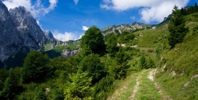 Feldberg und Stripsenkopf – Die Wächter vom Kaiserbachtal © Gipfelfieber.com
