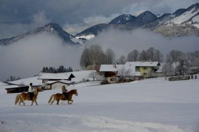 Ausritt im Schnee ©Gipfelfieber