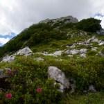 Der Ostgrat der Gehrenspitze ©Gipfelfieber