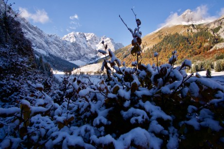 Steile Felswände ragen hinauf ©Gipfelfieber