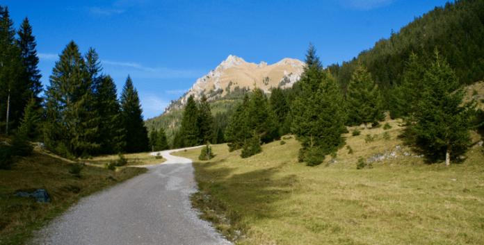 Bergwanderung zum Aggenstein: Windige Aussichten ©Gipfelfieber