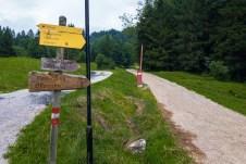 Auf dem Forstweg zur Ottenalm ©Gipfelfieber