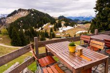 Frühling auf der Terrasse ©Gipfelfieber
