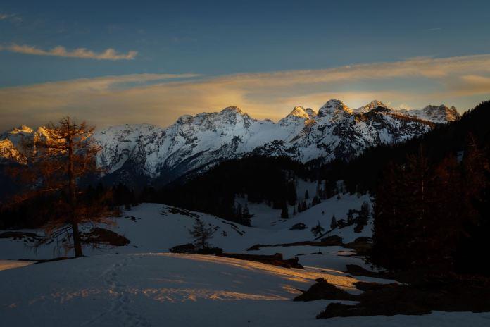 Alpengucken: Frühlingserwachen am Thällerer Kogel