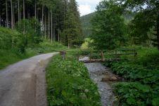 Am Mixnitzbach zurück zur Teichalm ©Gipfelfieber