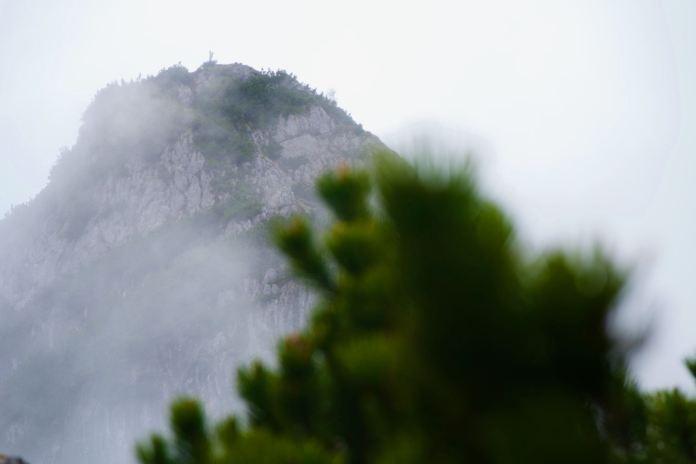 Alte Steige auf den Edelweißlahner: In den steilen Ostwänden der Reiteralpe