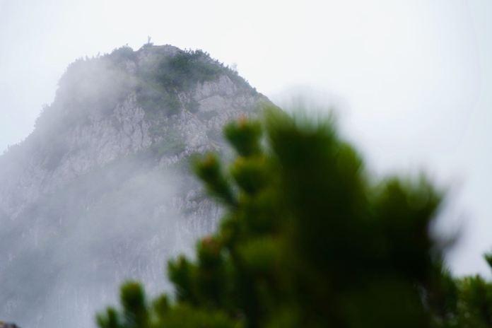 Alte Steige auf den Edelweißlahner: In den steilen Ostwänden der Reiteralpe ©Gipfelfieber