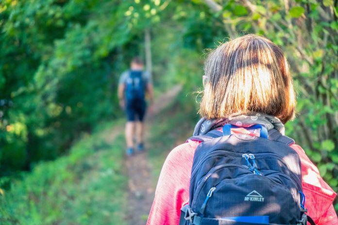 Weitwandern auf dem Natursteig Sieg: Auf den Spuren des Sägezahns
