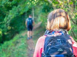 Weitwandern auf dem Natursteig Sieg: Auf den Spuren des Sägezahns ©Gipfelfieber
