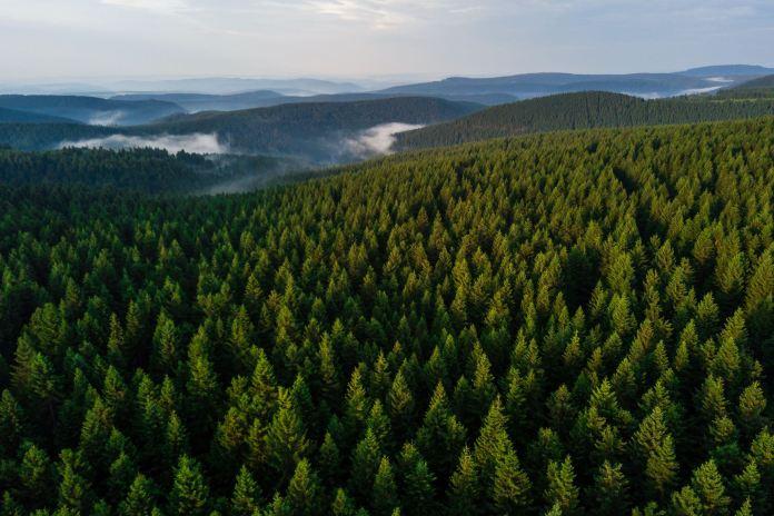 Projekt 16 Gipfel: Großer Beerberg, Schneekopf und Thüringer Träume ©Gipfelfieber