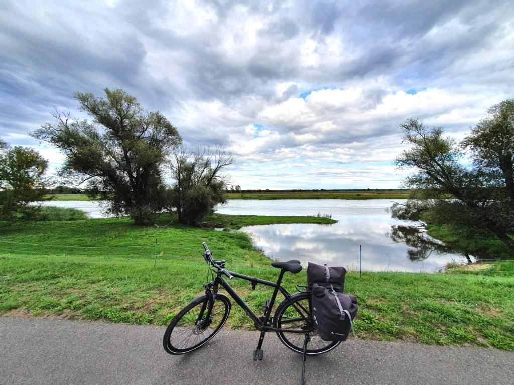 2020 wurde das Jahr der Radtouren: Stillleben auf dem Oder-Neiße-Radweg