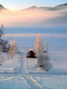 iverno 42