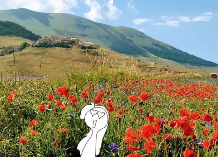 castelluccio da norcia fiori lenticchie