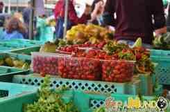 Mercato Malta Ta Qali