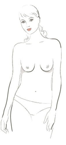 Стройни гърди