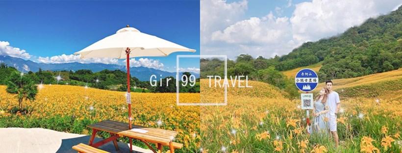 像幅畫般的場景就在台灣!!「小瑞士農場」美到像置身國外~放眼望去全是金針花!