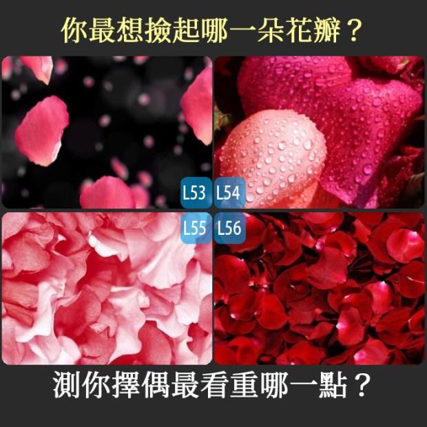 419_你最想撿起哪一朵花瓣?測你擇偶最看重哪一點?_主圖.jpg