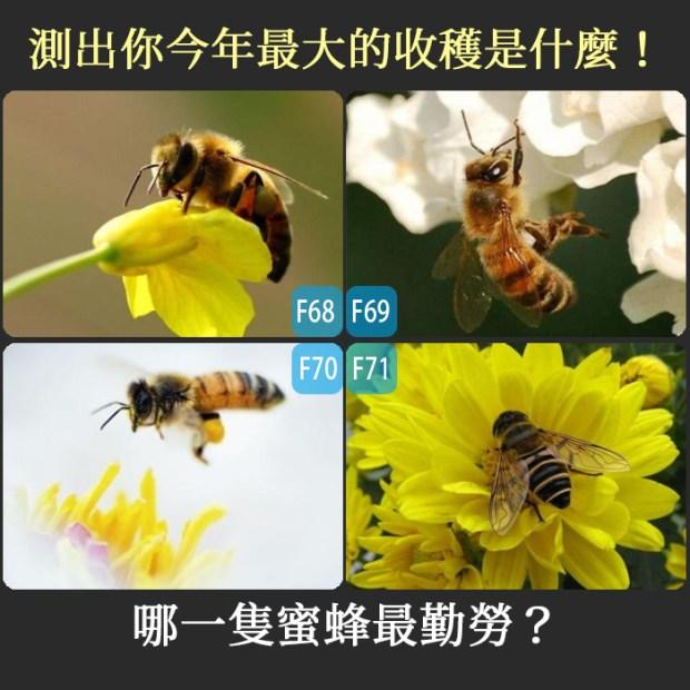【個性心理測驗】哪一隻蜜蜂最勤勞?測出你今年最大的收穫是什麼!