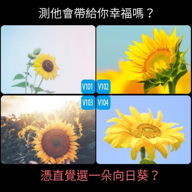 憑直覺選一朵向日葵?測他會帶給你幸福嗎?