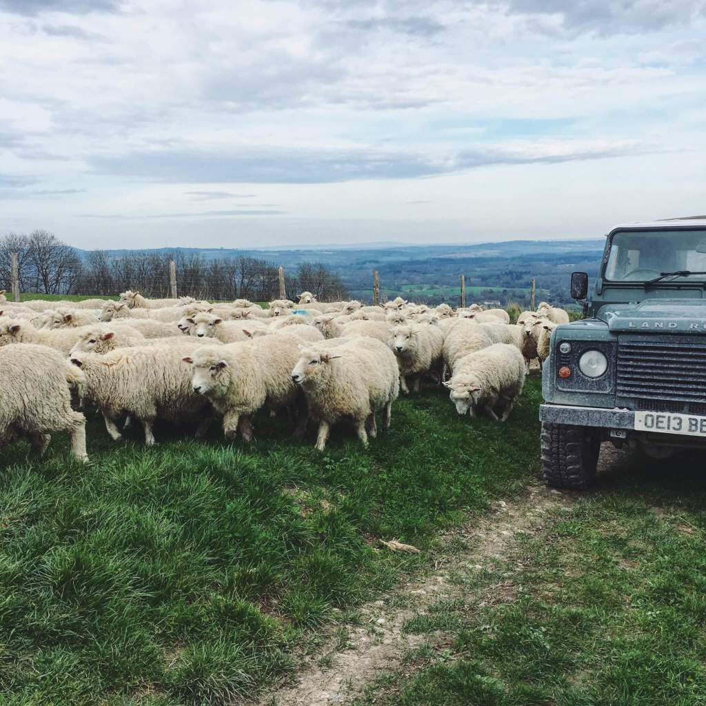 March on the farm…